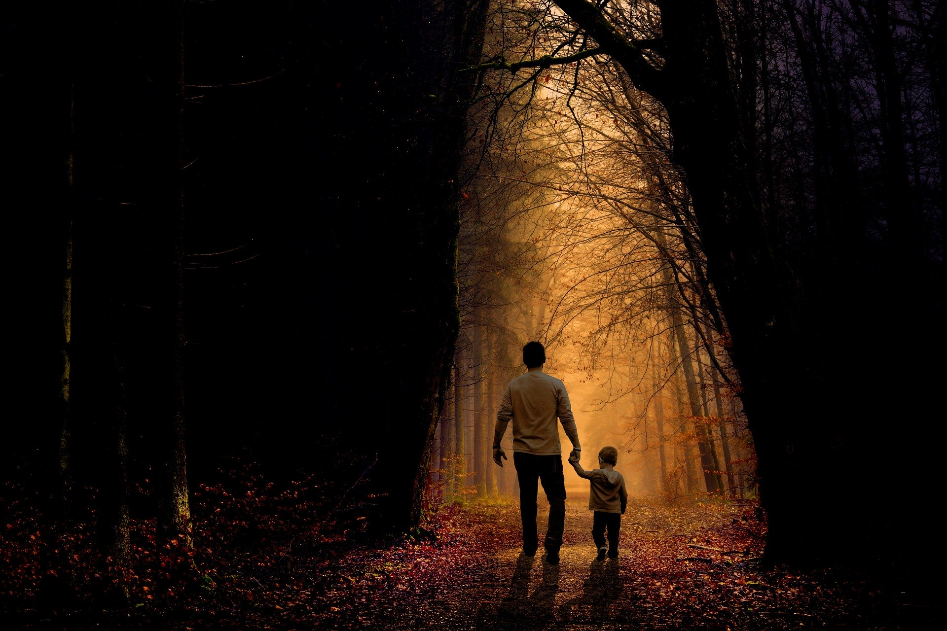 father and son holding hands in dark forest